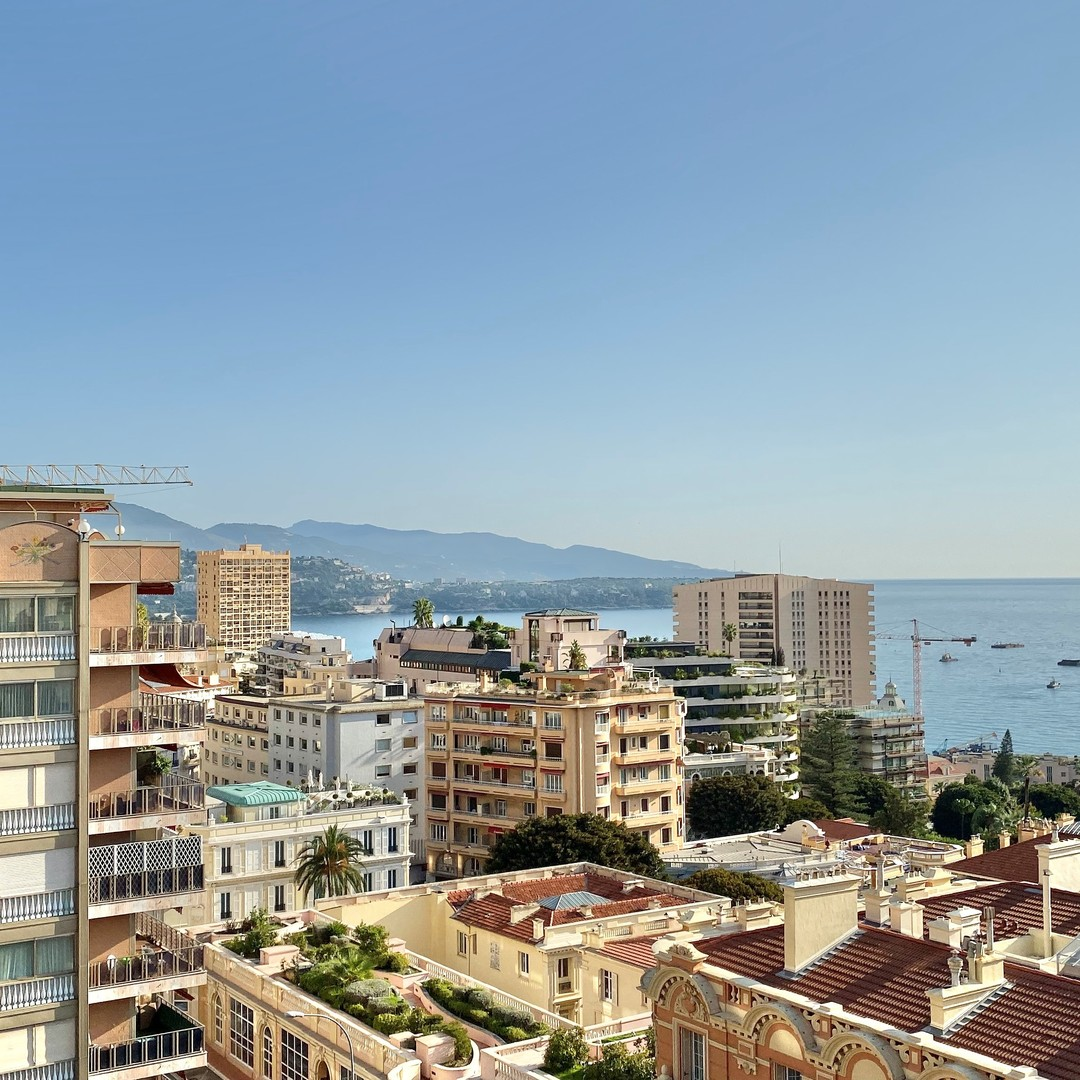 MONACO CENTRE STUDIO VUE MER MIXTE PARKING